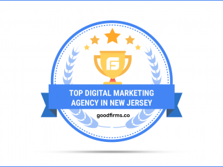 GoodFirms Endorses Wowbix for Digital Marketing Services in NJ